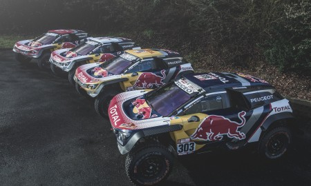 Peugeot Sport Team 2