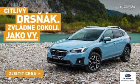 Subaru-XV-online-banner-100x600-A
